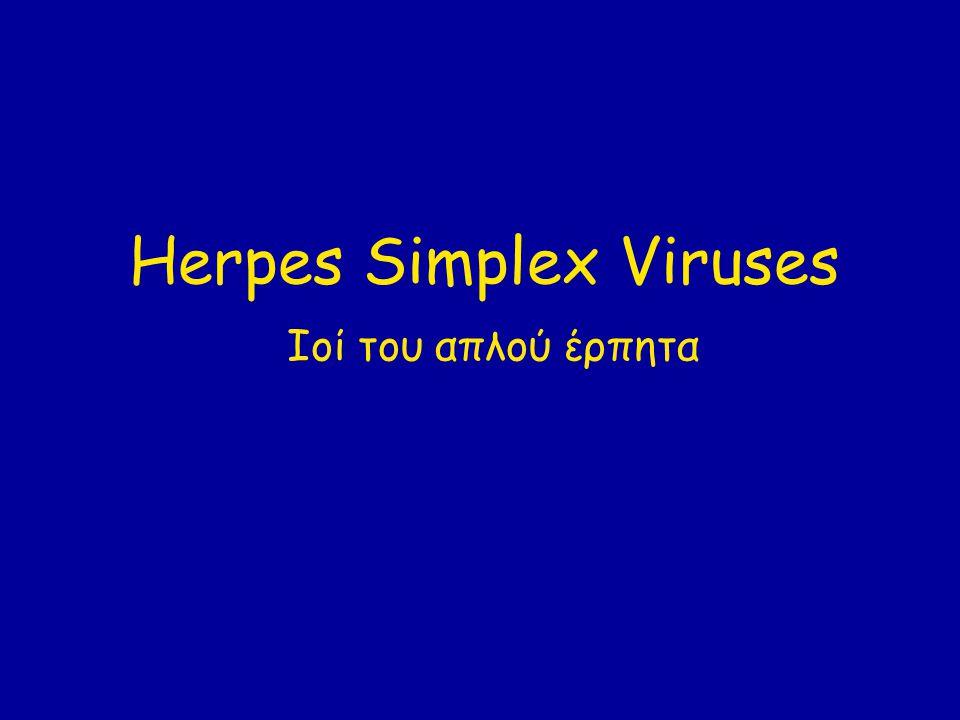 Χαρακτηριστικά Ανήκουν στην υπο-οικογένεια alphaherpesvirus Διπλής έλικας DNA ιός με γονιδίωμα περίπου 150 kb Το γονιδίωμα των HSV-1 και HSV-2 έχει 50–70 % ομολογία.