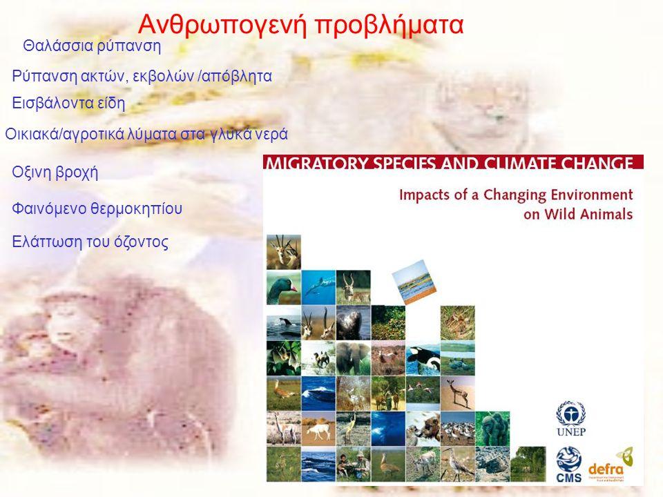 27 Θαλάσσια ρύπανση Ρύπανση ακτών, εκβολών /απόβλητα Εισβάλοντα είδη Οικιακά/αγροτικά λύματα στα γλυκά νερά Οξινη βροχή Φαινόμενο θερμοκηπίου Ελάττωση