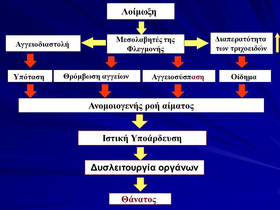 Λοίμωξη Μεσολαβητές της Φλεγμονής Διαπερατότητα των τριχοειδών Αγγειοδιαστολή ΥπότασηΑγγειοσύσπασηΟίδημα Ανομοιογενής ροή αίματος Θάνατος Θρόμβωση αγγ