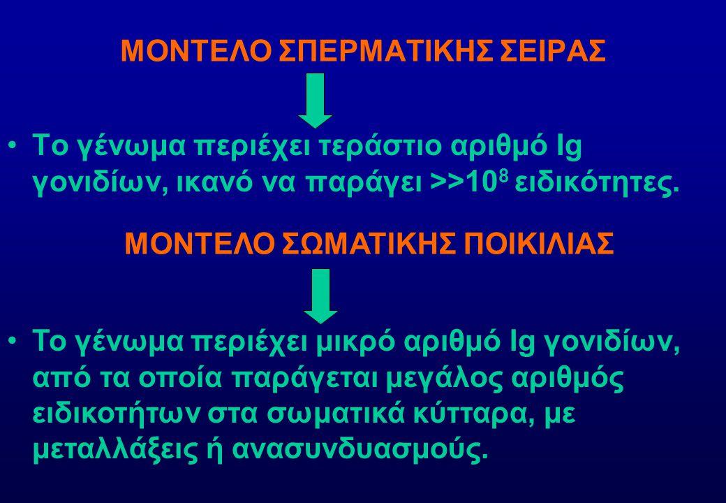 ΕΚΦΡΑΣΗ ΕΚΚΡΙΤΙΚΗΣ- ΜΕΜΒΡΑΝΙΚΗΣ Ig