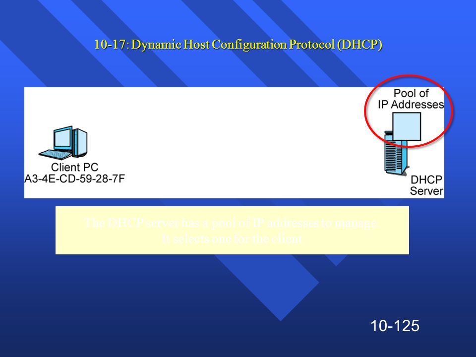 10-125 10-17: Dynamic Host Configuration Protocol (DHCP) The DHCP server has a pool of IP addresses to manage. It selects one for the client
