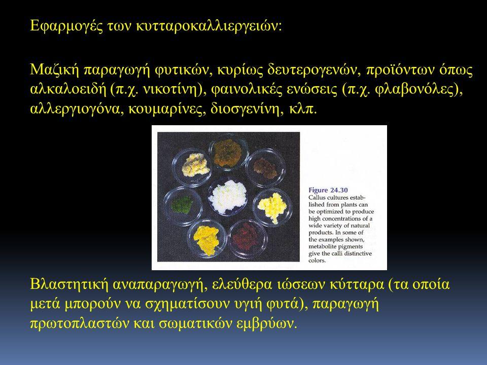 Εφαρμογές των κυτταροκαλλιεργειών: Μαζική παραγωγή φυτικών, κυρίως δευτερογενών, προϊόντων όπως αλκαλοειδή (π.χ. νικοτίνη), φαινολικές ενώσεις (π.χ. φ