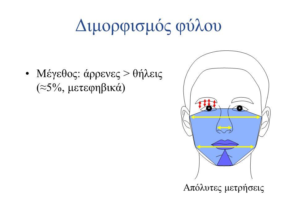Διμορφισμός φύλου Μέγεθος: άρρενες > θήλεις (≈5%, μετεφηβικά) Απόλυτες μετρήσεις