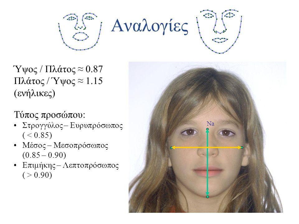 Αναλογίες Τύπος προσώπου: Στρογγύλος – Ευρυπρόσωπος ( < 0.85) Μέσος – Μεσοπρόσωπος (0.85 – 0.90) Επιμήκης – Λεπτοπρόσωπος ( > 0.90) Ύψος / Πλάτος ≈ 0.87 Πλάτος / Ύψος ≈ 1.15 (ενήλικες) ΝaΝa