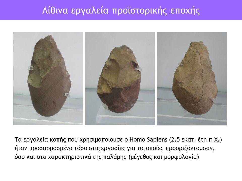 Λίθινα εργαλεία προϊστορικής εποχής Τα εργαλεία κοπής που χρησιμοποιούσε ο Homo Sapiens (2,5 εκατ. έτη π.Χ.) ήταν προσαρμοσμένα τόσο στις εργασίες για