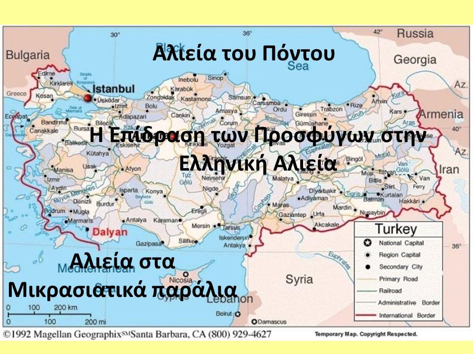 υπάρχει ένα μεγάλο ποσοστό μη μηχανοκίνητων σκαφών για τα σκάφη της μέσης αλιείας την περίοδο 1928- 1931 τα αλιευτικά σκάφη είχαν μικρό μέγεθος και χωρητικότητα (1- 20 GT) Αριθμός σκαφών Αναλογία μηχανοκίνητων / κωπήλατων σκαφών Έτη Η οικονομική χρεωκοπία της Ελλάδας (1932) οδήγησε στη μείωση του αριθμού των σκαφών και των αλιέων (34% και 28,9%, αντίστοιχα) Στοιχεία αλιείας την περίοδο του μεσοπολέμου