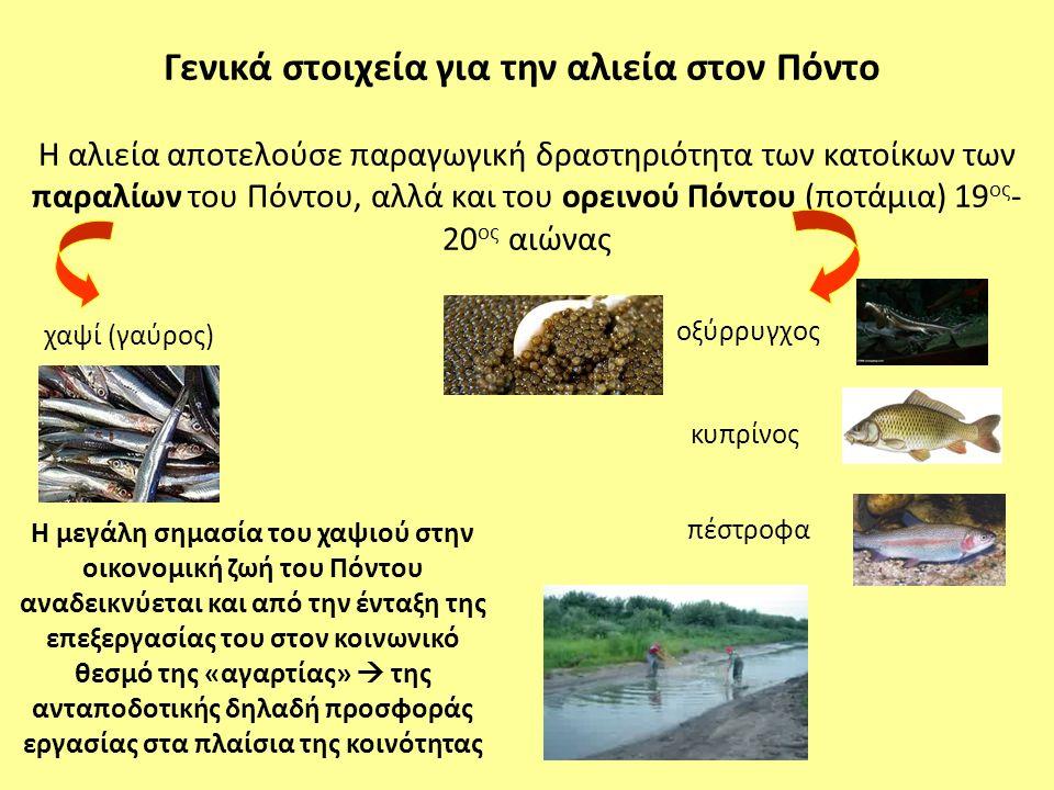Η αλιεία αποτελούσε παραγωγική δραστηριότητα των κατοίκων των παραλίων του Πόντου, αλλά και του ορεινού Πόντου (ποτάμια) 19 ος - 20 ος αιώνας Η μεγάλη