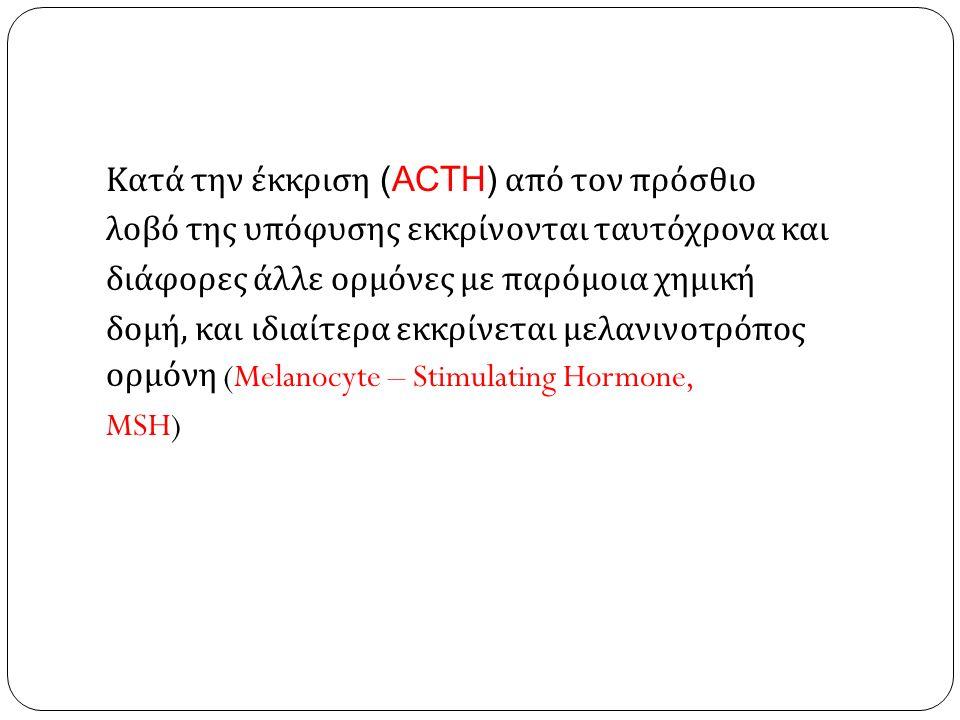 Κατά την έκκριση (ACTH) από τον πρόσθιο λοβό της υπόφυσης εκκρίνονται ταυτόχρονα και διάφορες άλλε ορμόνες με παρόμοια χημική δομή, και ιδιαίτερα εκκρ
