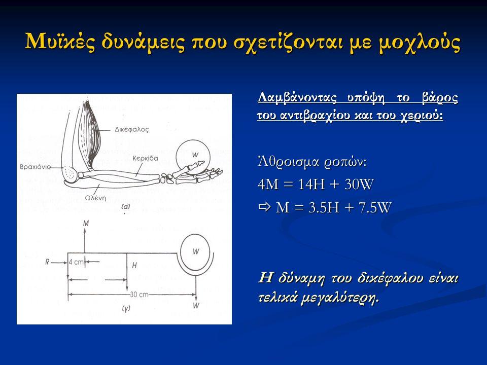 Μυϊκές δυνάμεις που σχετίζονται με μοχλούς Λαμβάνοντας υπόψη το βάρος του αντιβραχίου και του χεριού: Άθροισμα ροπών: 4M = 14H + 30W  M = 3.5H + 7.5W Η δύναμη του δικέφαλου είναι τελικά μεγαλύτερη.