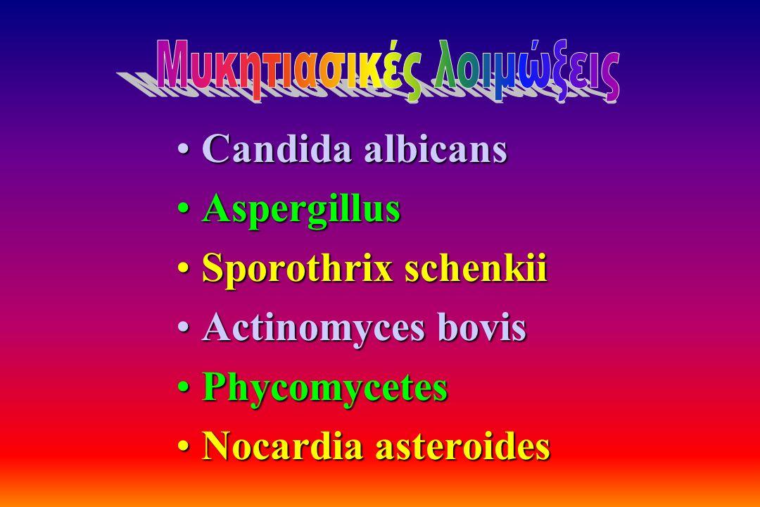 Candida albicansCandida albicans AspergillusAspergillus Sporothrix schenkiiSporothrix schenkii Actinomyces bovisActinomyces bovis PhycomycetesPhycomyc