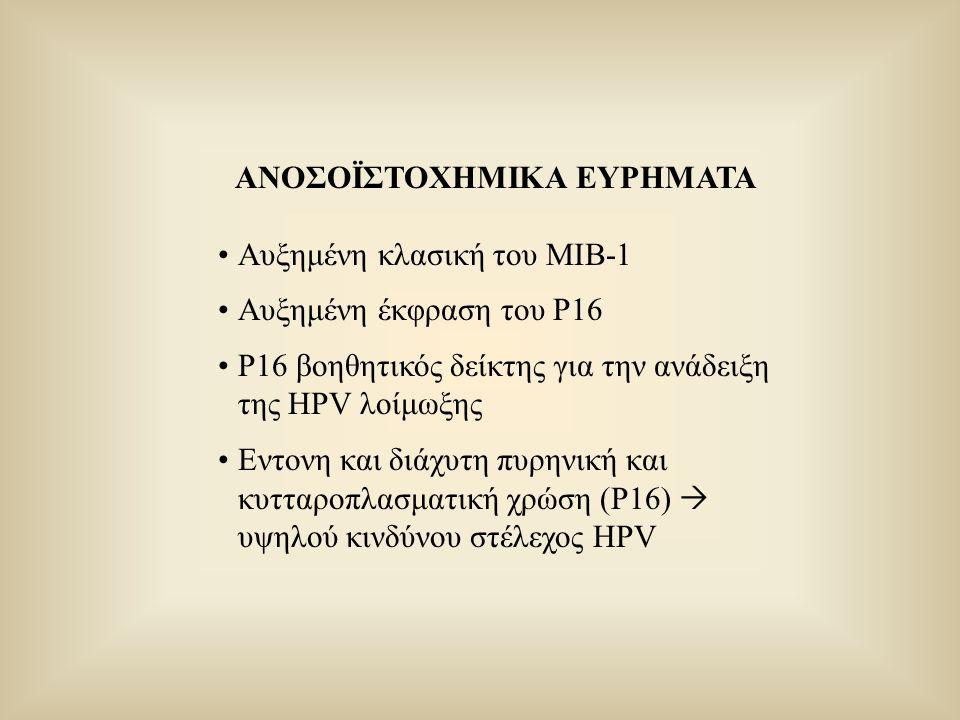 ΑΝΟΣΟΪΣΤΟΧΗΜΙΚΑ ΕΥΡΗΜΑΤΑ Αυξημένη κλασική του ΜΙΒ-1 Αυξημένη έκφραση του Ρ16 Ρ16 βοηθητικός δείκτης για την ανάδειξη της HPV λοίμωξης Εντονη και διάχυ
