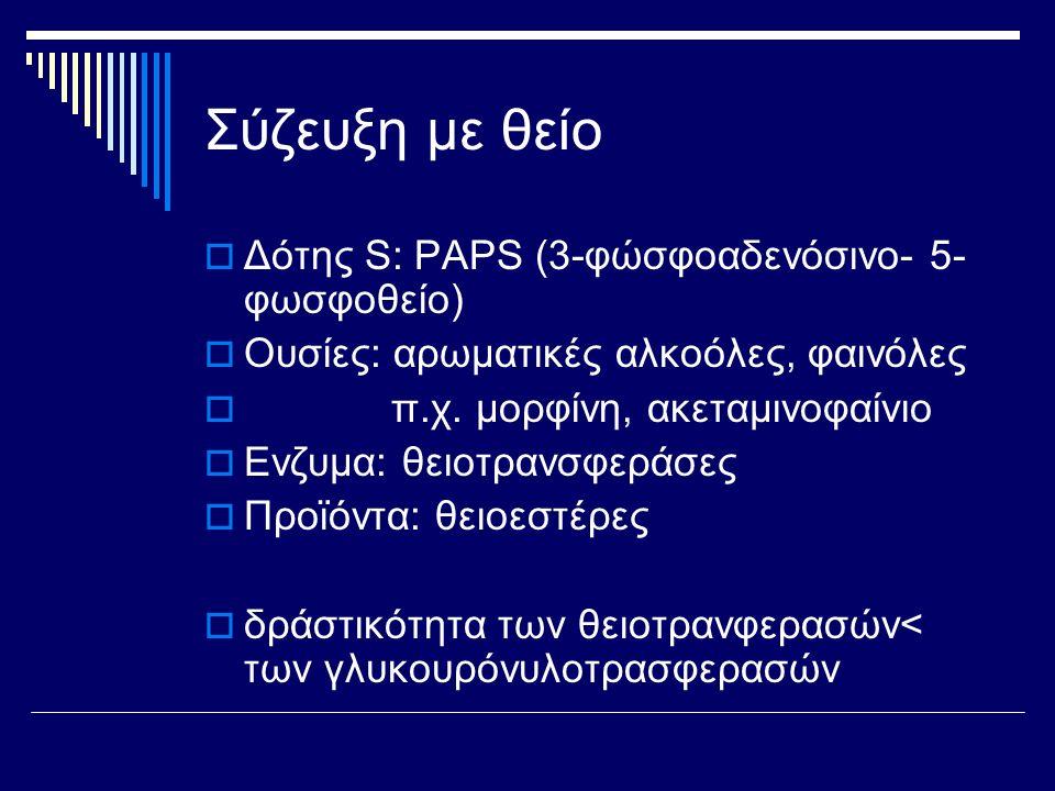 Σύζευξη με θείο  Δότης S: PAPS (3-φώσφοαδενόσινο- 5- φωσφοθείο)  Ουσίες: αρωματικές αλκοόλες, φαινόλες  π.χ. μορφίνη, ακεταμινοφαίνιο  Ενζυμα: θει