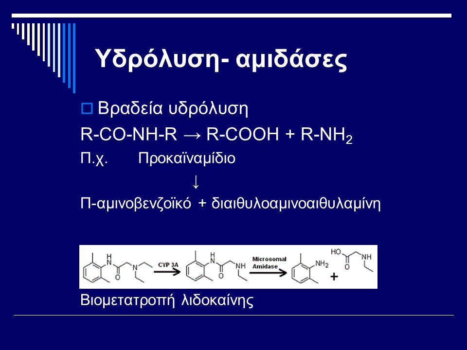 Υδρόλυση- αμιδάσες  Βραδεία υδρόλυση R-CO-ΝΗ-R → R-COOH + R-ΝΗ 2 Π.χ. Προκαϊναμίδιο ↓ Π-αμινοβενζοϊκό + διαιθυλοαμινοαιθυλαμίνη Βιομετατροπή λιδοκαίν