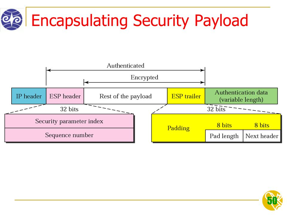50 Encapsulating Security Payload