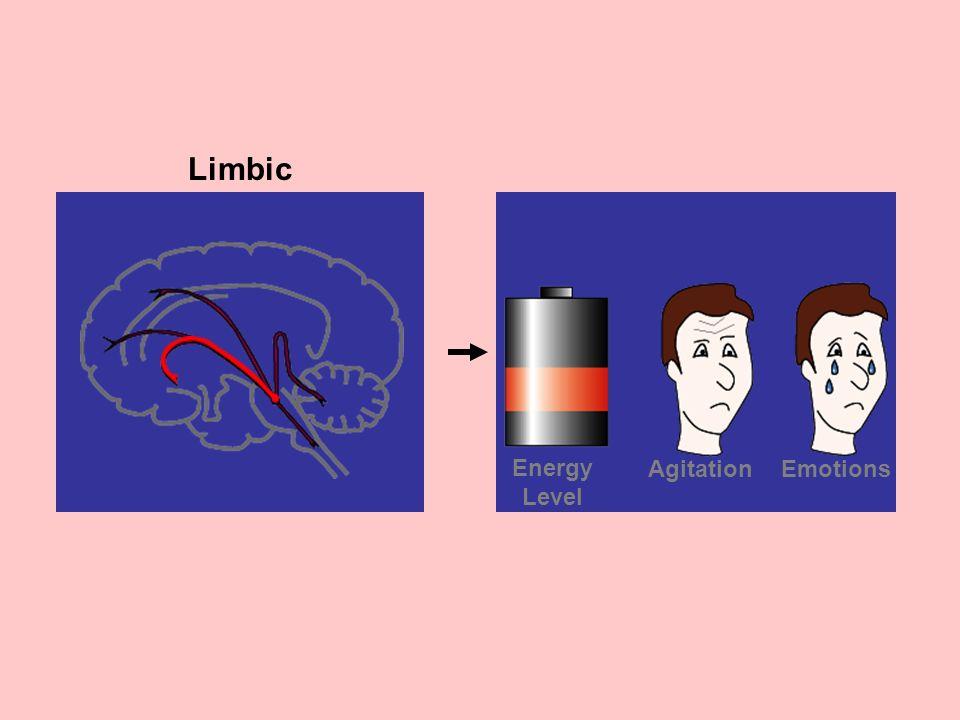 Limbic EmotionsAgitation Energy Level