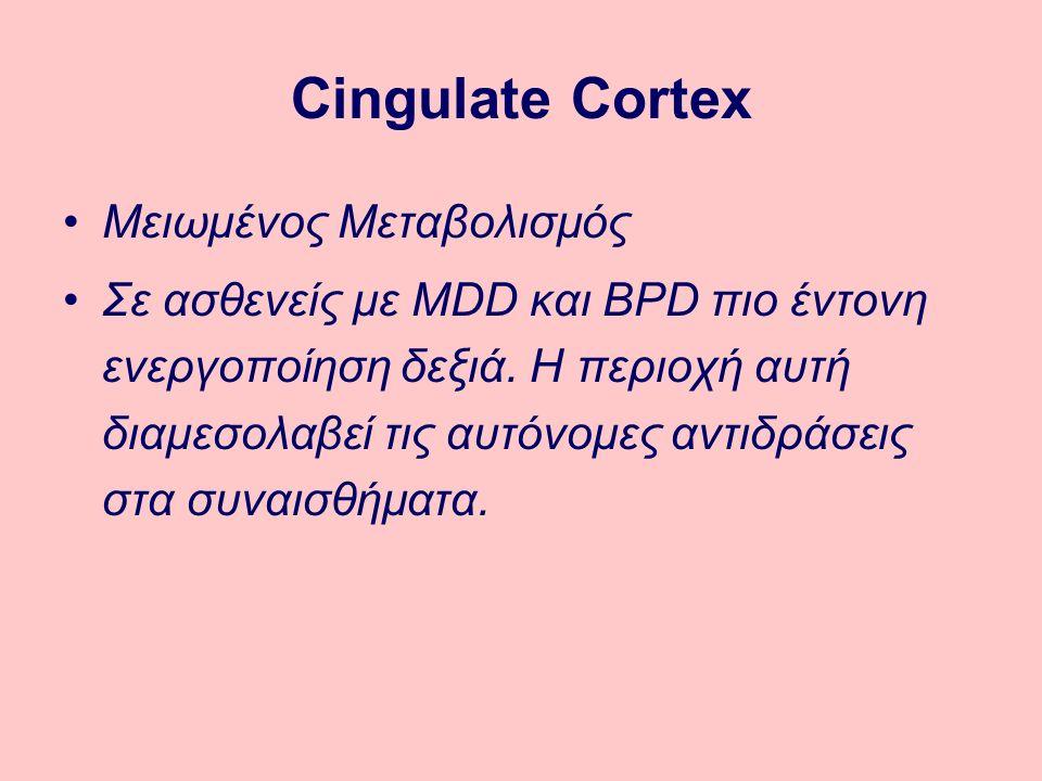 Cingulate Cortex Μειωμένος Μεταβολισμός Σε ασθενείς με MDD και BPD πιο έντονη ενεργοποίηση δεξιά.