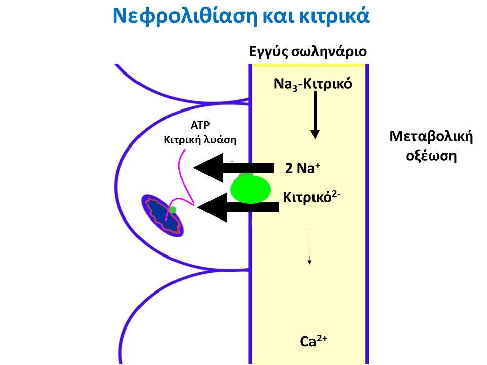 Citrate -3 Ca +2 Μεταβολική οξέωση 2 Na + Ca 2+ Νεφρολιθίαση και κιτρικά Εγγύς σωληνάριο Na 3 -Κιτρικό Κιτρικό 2- ATP Κιτρική λυάση