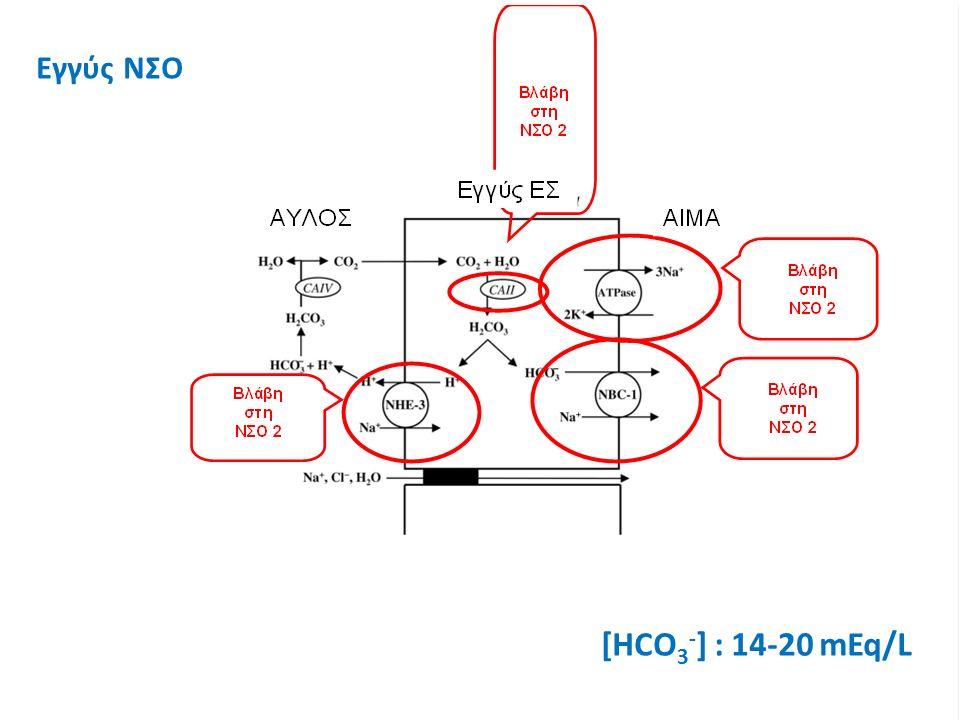 [HCO 3 - ] : 14-20 mEq/L Εγγύς ΝΣΟ