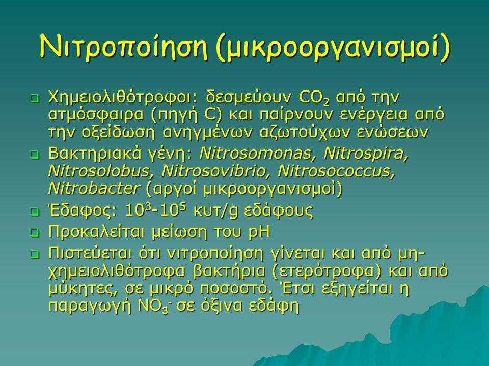 Νιτροποίηση (μικροοργανισμοί)  Χημειολιθότροφοι: δεσμεύουν CO 2 από την ατμόσφαιρα (πηγή C) και παίρνουν ενέργεια από την οξείδωση ανηγμένων αζωτούχω