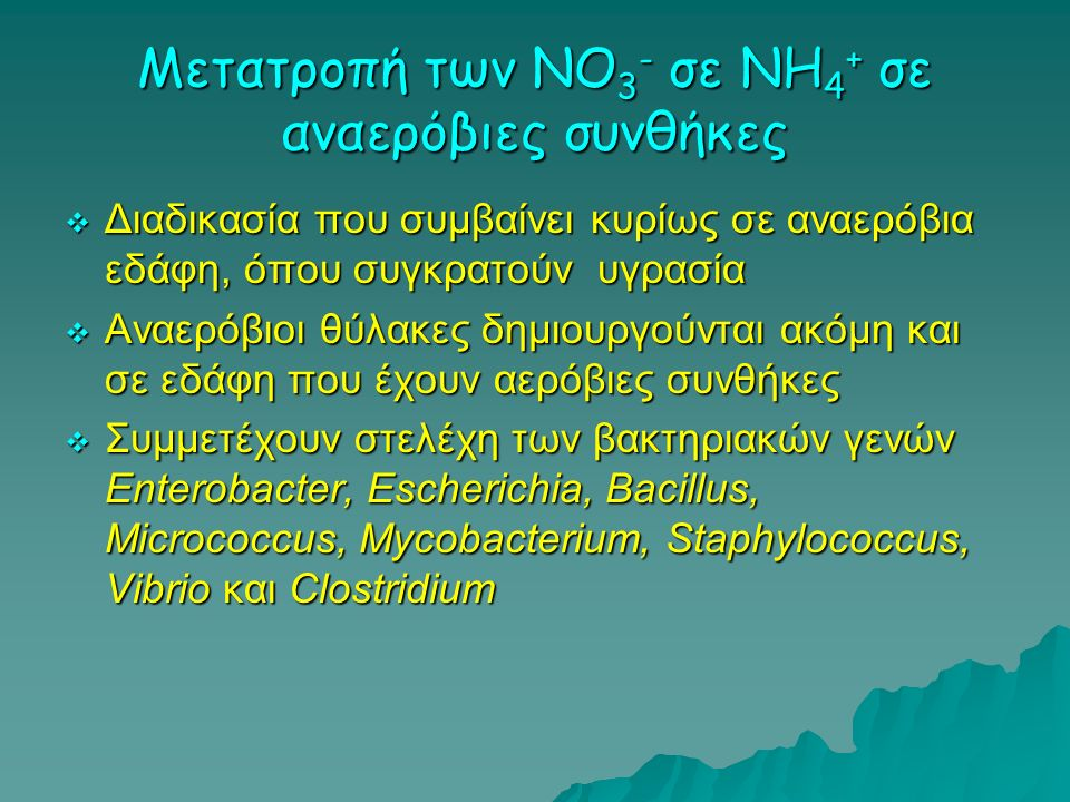 Μετατροπή των NO 3 - σε ΝΗ 4 + σε αναερόβιες συνθήκες  Διαδικασία που συμβαίνει κυρίως σε αναερόβια εδάφη, όπου συγκρατούν υγρασία  Αναερόβιοι θύλακ