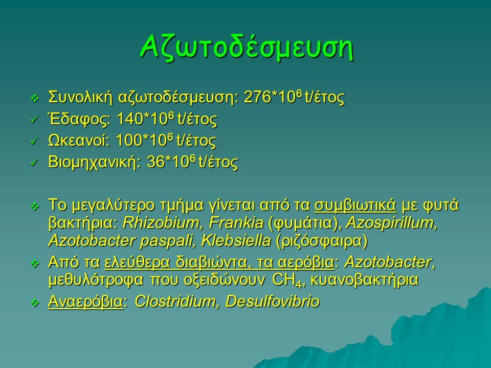 Αζωτοδέσμευση  Συνολική αζωτοδέσμευση: 276*10 6 t/έτος Έδαφος: 140*10 6 t/έτος Έδαφος: 140*10 6 t/έτος Ωκεανοί: 100*10 6 t/έτος Ωκεανοί: 100*10 6 t/έ