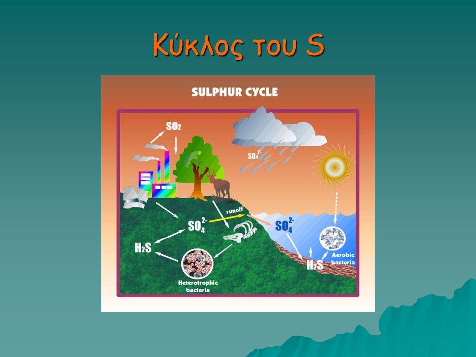 Κύκλος του S