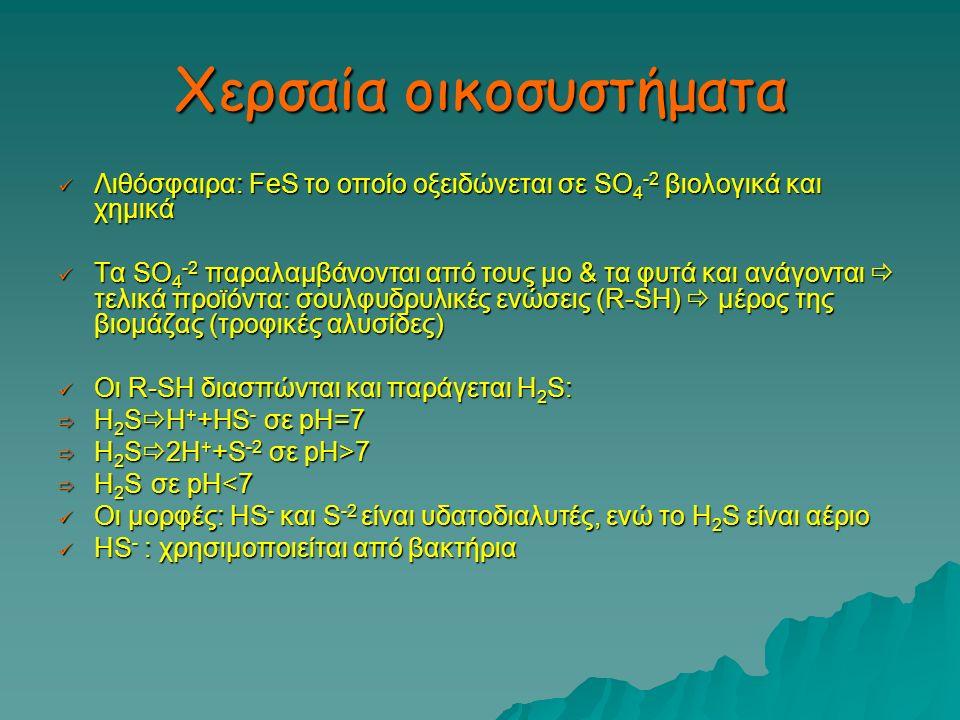 Χερσαία οικοσυστήματα Λιθόσφαιρα: FeS το οποίο οξειδώνεται σε SO 4 -2 βιολογικά και χημικά Λιθόσφαιρα: FeS το οποίο οξειδώνεται σε SO 4 -2 βιολογικά κ