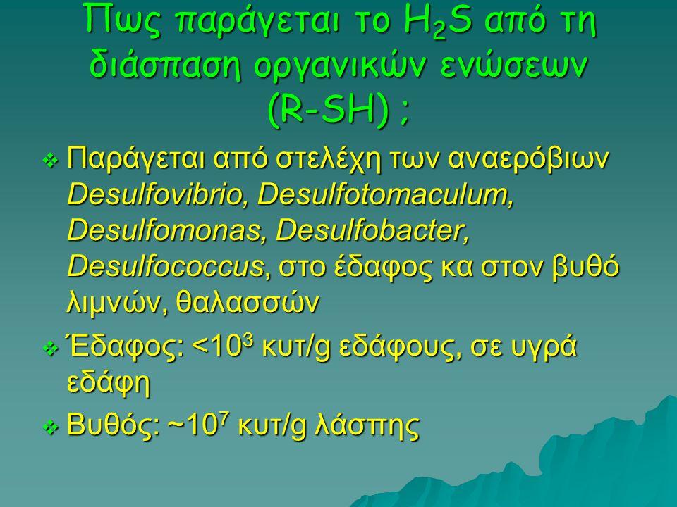 Πως παράγεται το H 2 S από τη διάσπαση οργανικών ενώσεων (R-SH) ;  Παράγεται από στελέχη των αναερόβιων Desulfovibrio, Desulfotomaculum, Desulfomonas