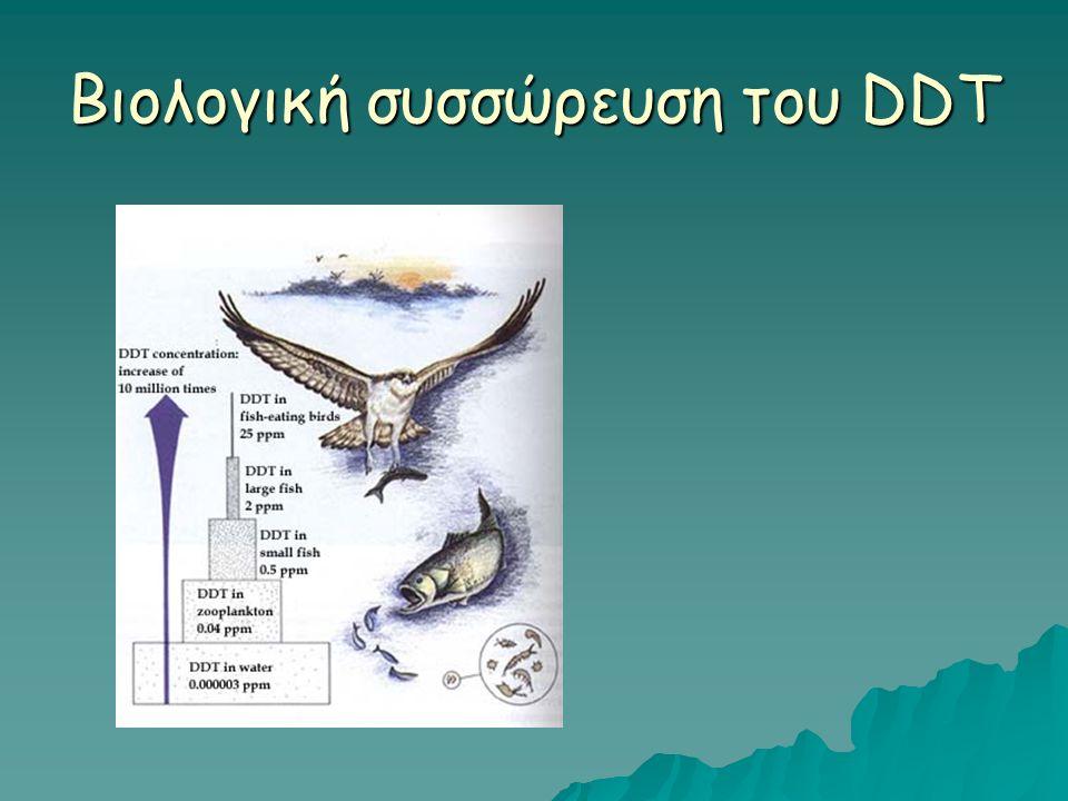 Βιολογική συσσώρευση του DDT