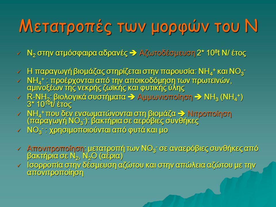 Μετατροπές των μορφών του Ν Ν 2 στην ατμόσφαιρα αδρανές  Αζωτοδέσμευση 2* 10 8 t Ν/ έτος Ν 2 στην ατμόσφαιρα αδρανές  Αζωτοδέσμευση 2* 10 8 t Ν/ έτο