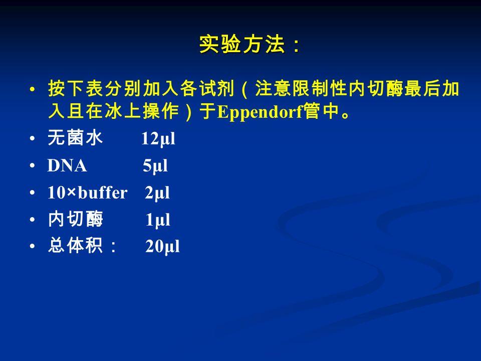 实验方法: 按下表分别加入各试剂(注意限制性内切酶最后加 入且在冰上操作)于 Eppendorf 管中。 无菌水 12μl DNA 5μl 10×buffer 2μl 内切酶 1μl 总体积: 20μl