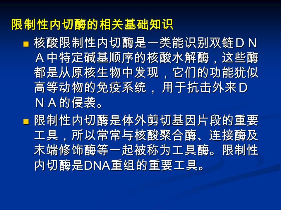 限制性内切酶的相关基础知识 核酸限制性内切酶是一类能识别双链DN A中特定碱基顺序的核酸水解酶,这些酶 都是从原核生物中发现,它们的功能犹似 高等动物的免疫系统, 用于抗击外来D NA的侵袭。 核酸限制性内切酶是一类能识别双链DN A中特定碱基顺序的核酸水解酶,这些酶 都是从原核生物中发现,它们的功