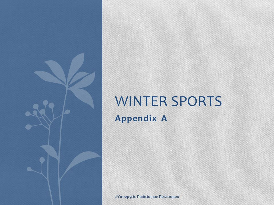 WINTER SPORTS Appendix A ©Υπουργείο Παιδείας και Πολιτισμού