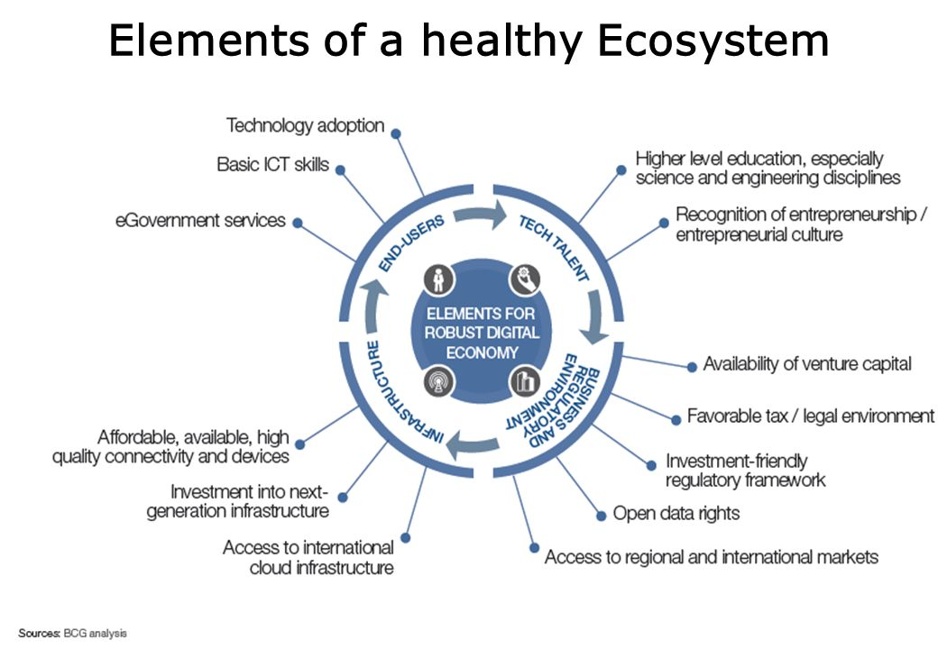 Elements of a healthy Ecosystem