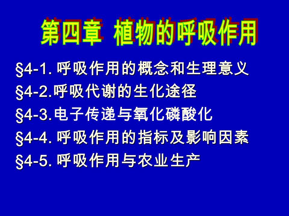§4-1. 呼吸作用的概念和生理意义 §4-2. 呼吸代谢的生化途径 §4-3. §4-3. 电子传递与氧化磷酸化 §4-4. 呼吸作用的指标及影响因素 §4-5. 呼吸作用与农业生产