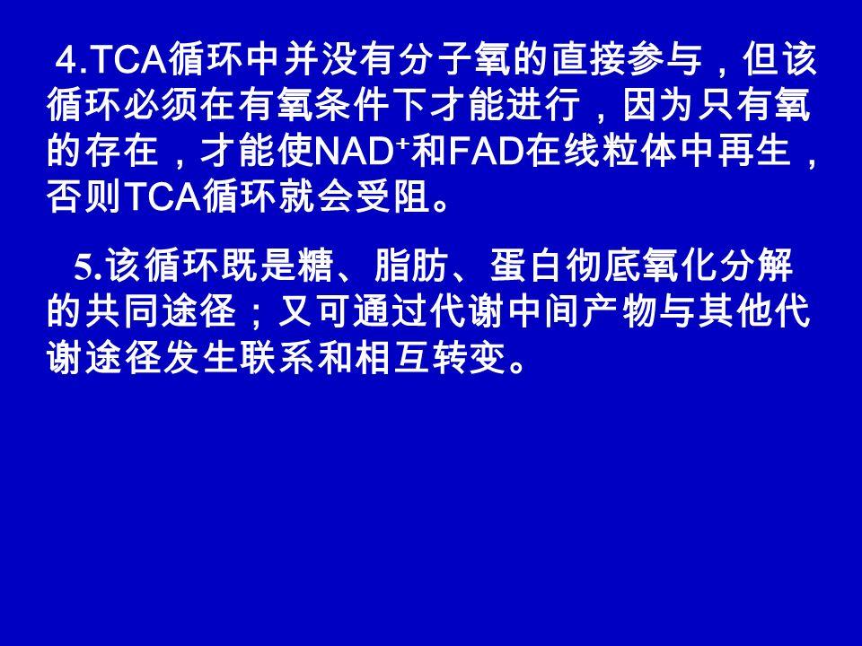 4.TCA 循环中并没有分子氧的直接参与,但该 循环必须在有氧条件下才能进行,因为只有氧 的存在,才能使 NAD + 和 FAD 在线粒体中再生, 否则 TCA 循环就会受阻。 5.
