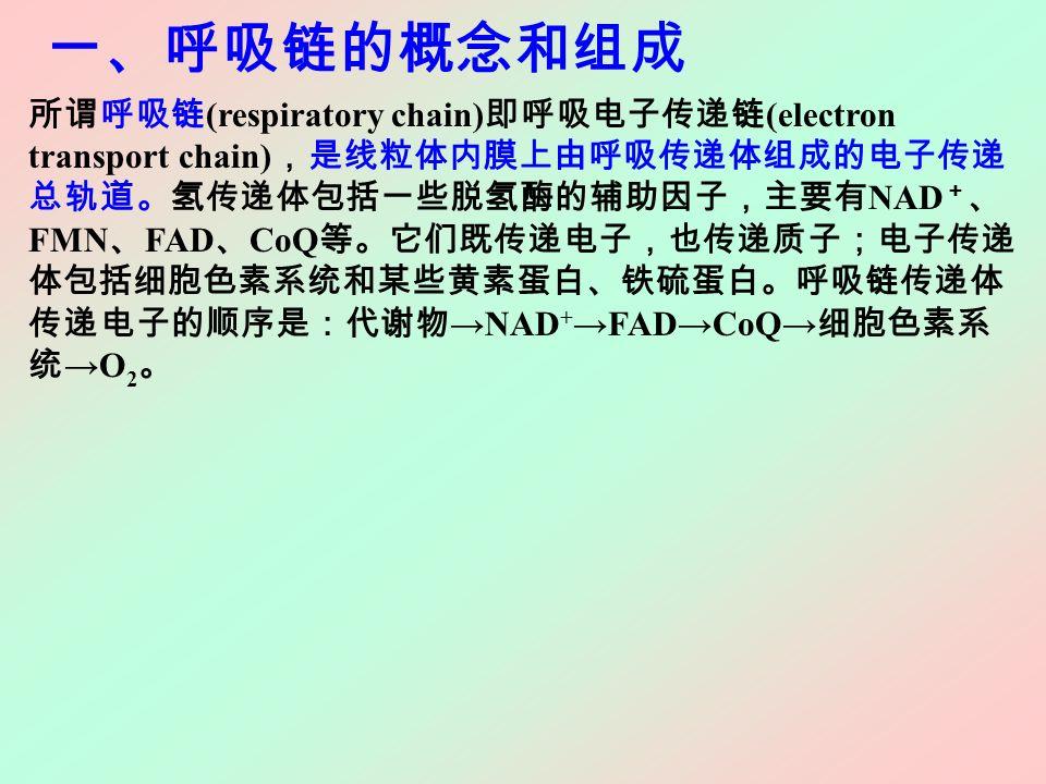 一、呼吸链的概念和组成 所谓呼吸链 (respiratory chain) 即呼吸电子传递链 (electron transport chain) ,是线粒体内膜上由呼吸传递体组成的电子传递 总轨道。氢传递体包括一些脱氢酶的辅助因子,主要有 NAD + 、 FMN 、 FAD 、 CoQ 等。它们既传递电子,也传递质子;电子传递 体包括细胞色素系统和某些黄素蛋白、铁硫蛋白。呼吸链传递体 传递电子的顺序是:代谢物 →NAD + →FAD→CoQ→ 细胞色素系 统 →O 2 。