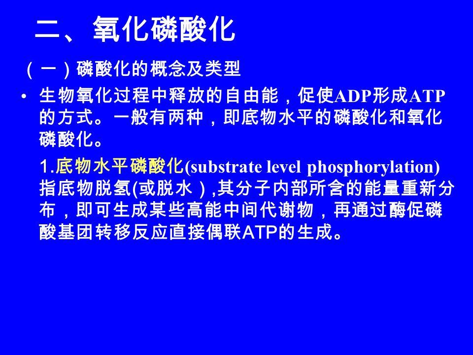 二、氧化磷酸化 (一)磷酸化的概念及类型 生物氧化过程中释放的自由能,促使 ADP 形成 ATP 的方式。一般有两种,即底物水平的磷酸化和氧化 磷酸化。 1.