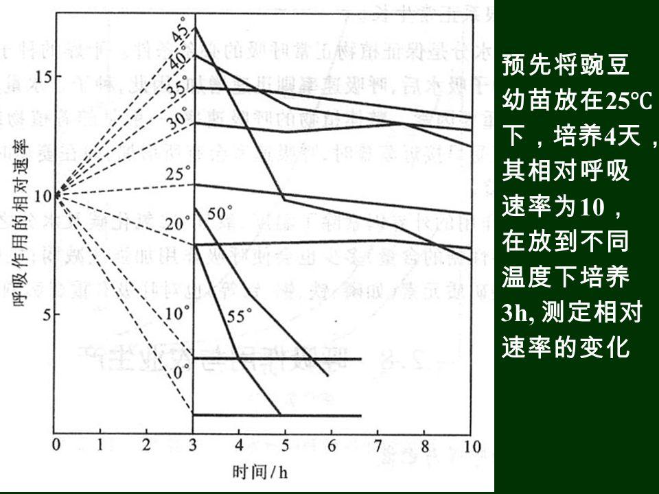 预先将豌豆 幼苗放在 25 ℃ 下,培养 4 天, 其相对呼吸 速率为 10 , 在放到不同 温度下培养 3h, 测定相对 速率的变化