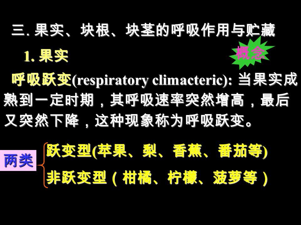 三.果实、块根、块茎的呼吸作用与贮藏 1.