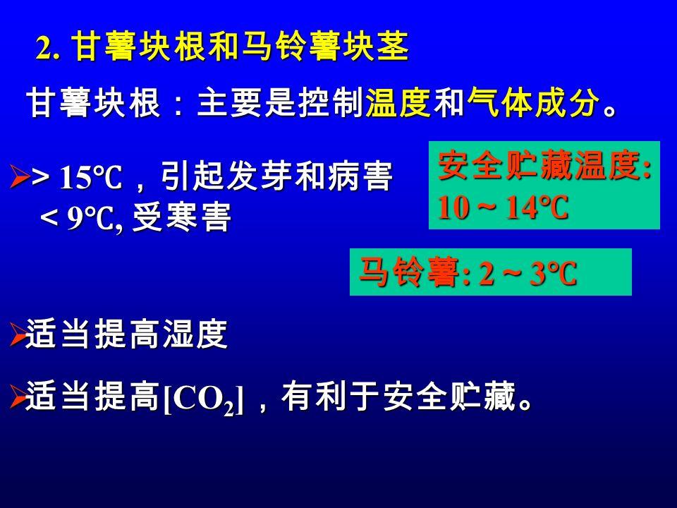 2. 甘薯块根和马铃薯块茎 甘薯块根:主要是控制温度和气体成分。  适当提高 [CO 2 ] ,有利于安全贮藏。  > 15 ℃,引起发芽和病害 < 9 ℃, 受寒害 < 9 ℃, 受寒害 安全贮藏温度 : 10 ~ 14 ℃ 马铃薯 : 2 ~ 3 ℃  适当提高湿度