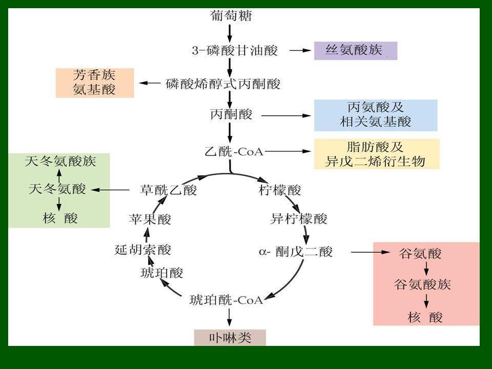 呼吸底物不同, RQ 不同。 ① 葡萄糖 : R.Q=1.0 C 6 H 12 O 6 + 6O 2 → 6CO 2 + 6H 2 O R.Q=6/6=1.0 ② 脂肪、蛋白质 : RQ < 1 , (棕榈酸) C 16 H 32 O 2 + 23O 2 → 16CO 2 + 16H 2 O R.Q=16/23=0.70 ③ 有机酸 : RQ > 1, (苹果酸) C 4 H 6 O 5 + 3O 2 → 4CO 2 + 3H 2 O R.Q=4/3=1.33 二.