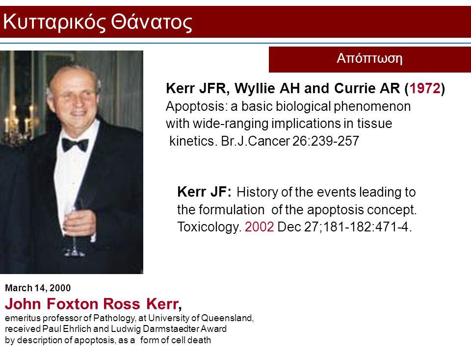 Κυτταρικός Θάνατος Απόπτωση Kerr JFR, Wyllie AH and Currie AR (1972) Apoptosis: a basic biological phenomenon with wide-ranging implications in tissue