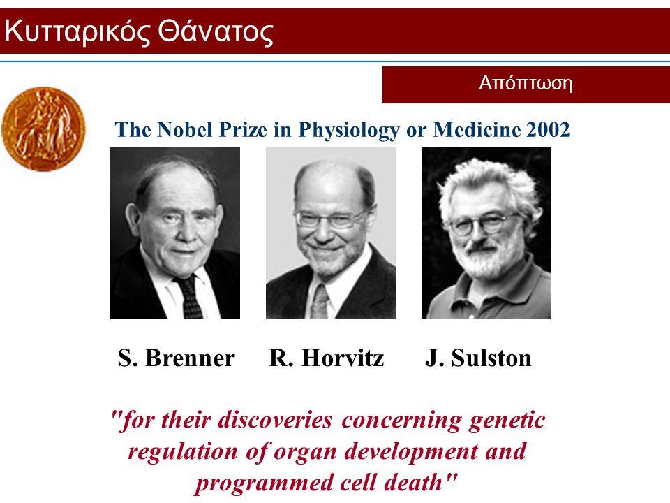Κυτταρικός Θάνατος Απόπτωση The Nobel Prize in Physiology or Medicine 2002