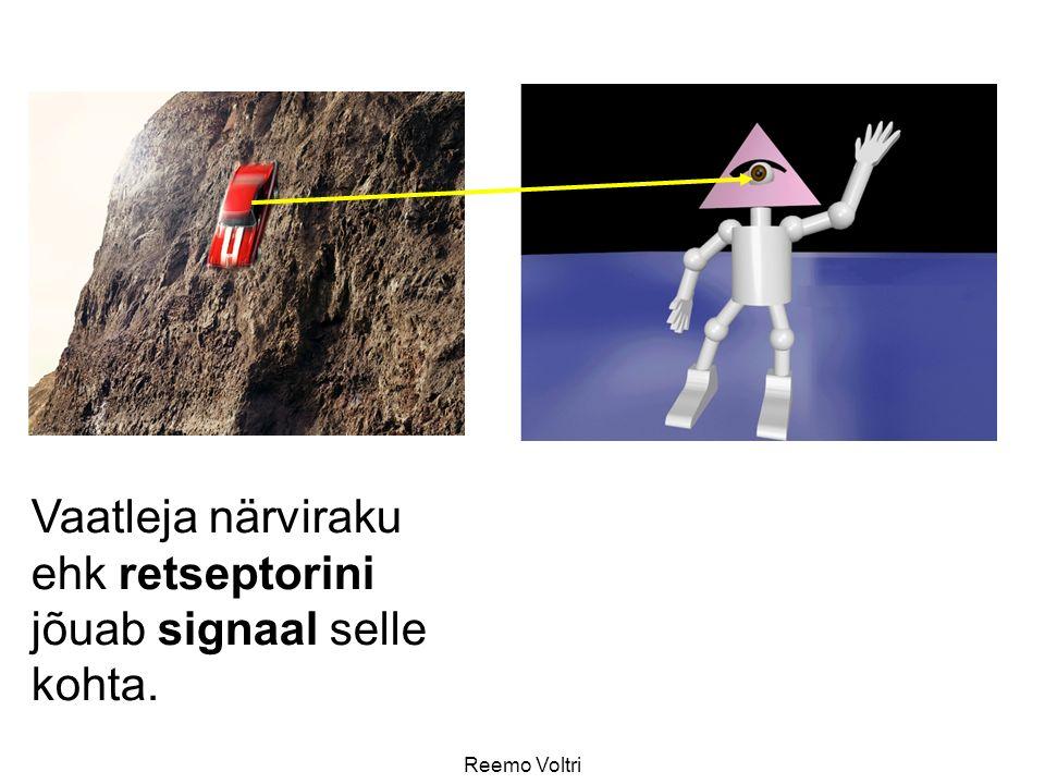Reemo Voltri Vaatleja närviraku ehk retseptorini jõuab signaal selle kohta.