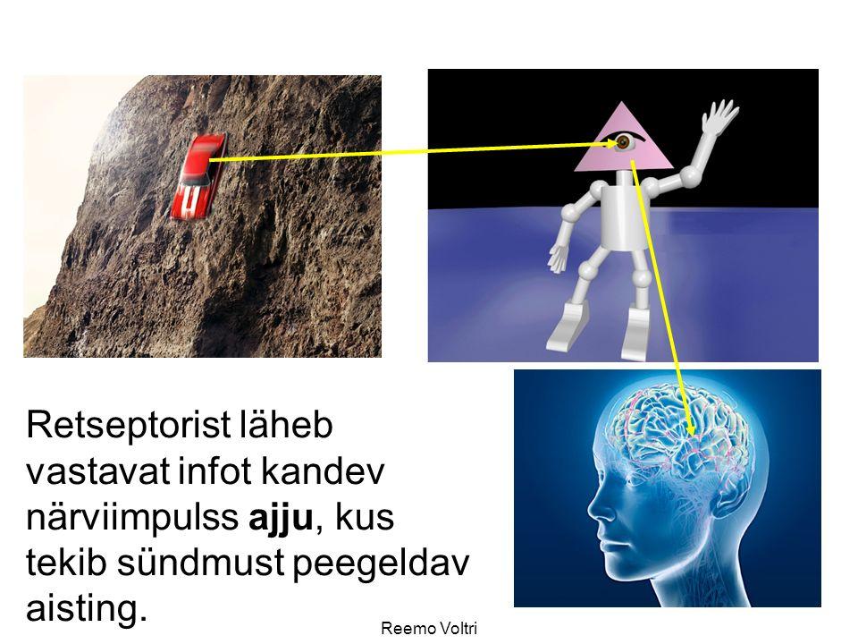 Reemo Voltri Retseptorist läheb vastavat infot kandev närviimpulss ajju, kus tekib sündmust peegeldav aisting.