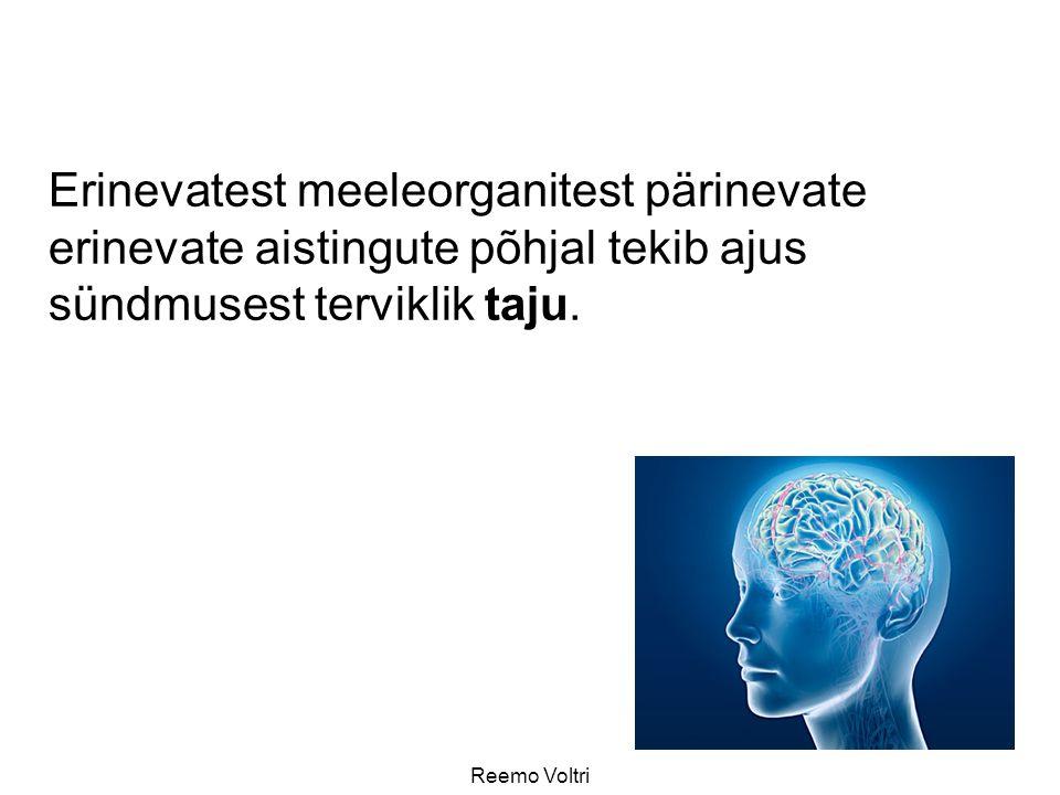 Reemo Voltri Erinevatest meeleorganitest pärinevate erinevate aistingute põhjal tekib ajus sündmusest terviklik taju.