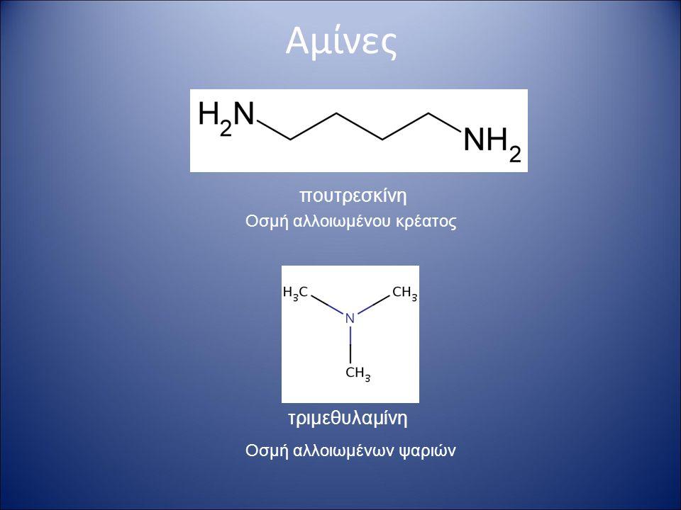 Αμίνες- Ονοματολογία (1) 1- προπυλαμίνη 1- αμινοπροπάνιο  Πρωτοταγείς αμίνες  Δευτεροταγείς και τριτοταγείς αμίνες αιθυλομεθυλαμίνη διφαινυλαμίνη Lower amines are named with the suffix -amine.