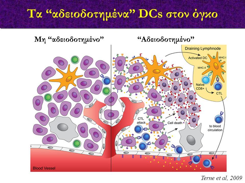 Terne et al, 2009 Τα αδειοδοτημένα DCs στον όγκο Μη αδειοδοτημένο Aδειοδοτημένο