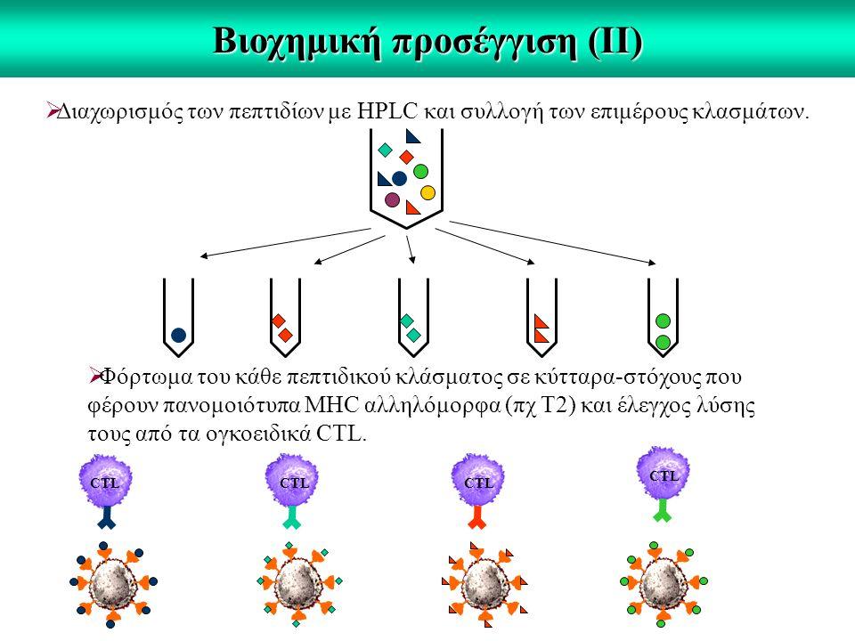 Βιοχημική προσέγγιση (ΙΙ)  Διαχωρισμός των πεπτιδίων με HPLC και συλλογή των επιμέρους κλασμάτων.